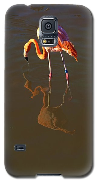 Flamingo Galaxy S5 Case