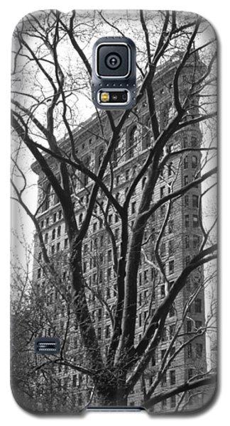 Flat Iron Tree Galaxy S5 Case