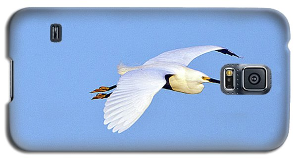 Florida, Venice, Snowy Egret Flying Galaxy S5 Case by Bernard Friel
