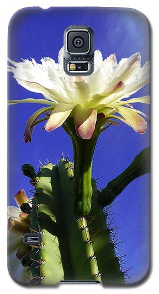 Flowering Cactus 3 Galaxy S5 Case