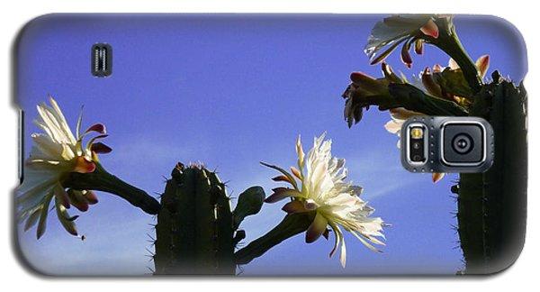 Flowering Cactus 4 Galaxy S5 Case