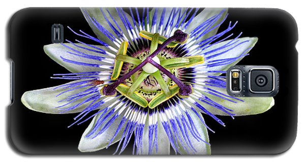 Galaxy S5 Case featuring the photograph Fly's Passion by Jennie Breeze
