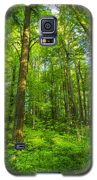 Forest Canopy Galaxy S5 Case