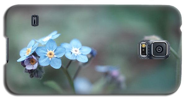 Forget Me Not Galaxy S5 Case by Rachel Mirror