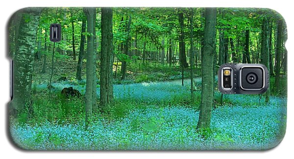 Forget-me-nots In Peninsula State Park Galaxy S5 Case