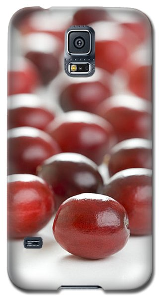 Galaxy S5 Case featuring the photograph Fresh Cranberries Isolated by Lee Avison