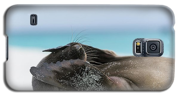 Galapagos Sea Lion Pup Covering Face Galaxy S5 Case