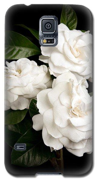 Gardenia Galaxy S5 Case