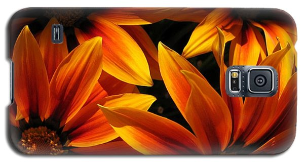 Galaxy S5 Case featuring the photograph Gazania Named Kiss Orange Flame by J McCombie