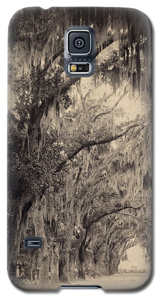 Galaxy S5 Case featuring the painting Georgia Oak Trees, C1887 by Granger