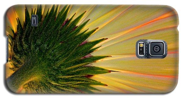 Galaxy S5 Case featuring the photograph Gerbera Fire by Roman Kurywczak
