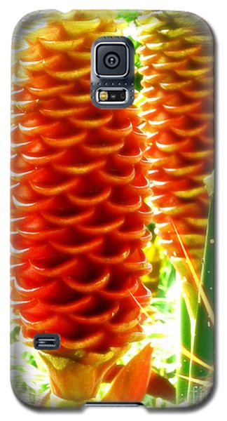 Galaxy S5 Case featuring the photograph Ginger by Therese Alcorn