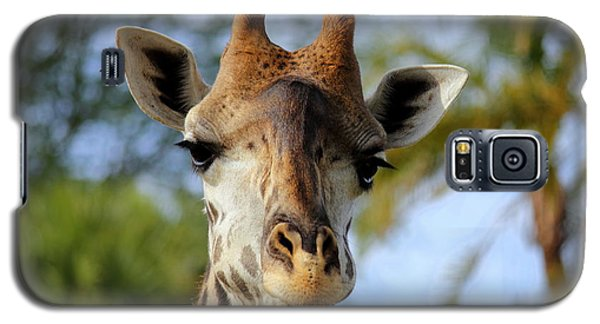 Galaxy S5 Case featuring the photograph Giraffe by Lisa L Silva