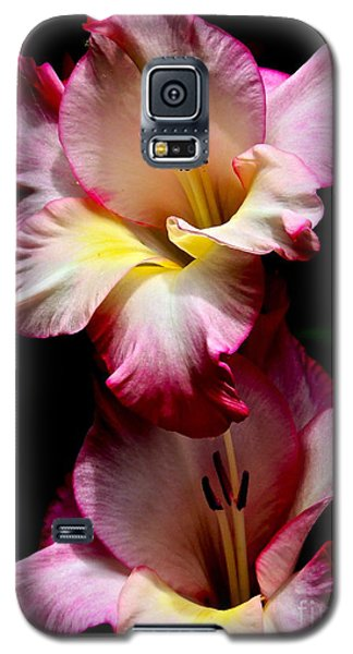 Gladiolus Beauty Galaxy S5 Case by Eve Spring