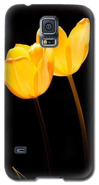 Glowing Tulips II Galaxy S5 Case