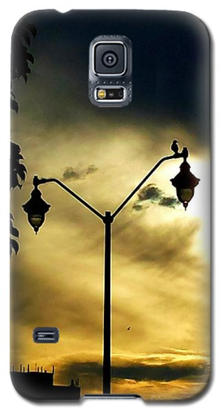Galaxy S5 Case featuring the photograph Golden by Judy Via-Wolff