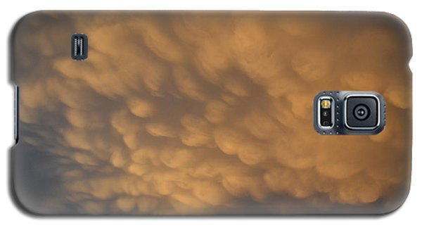 Galaxy S5 Case featuring the photograph Golden Light  by Lyle Crump