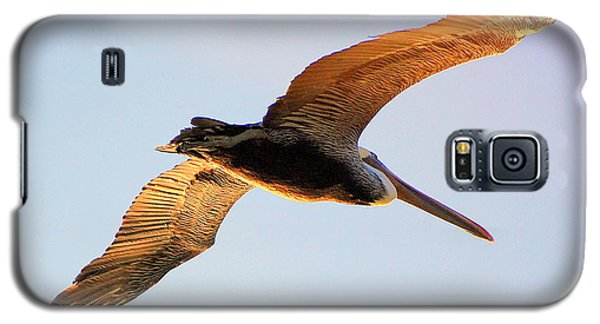 Galaxy S5 Case featuring the photograph Golden Wings by AJ  Schibig