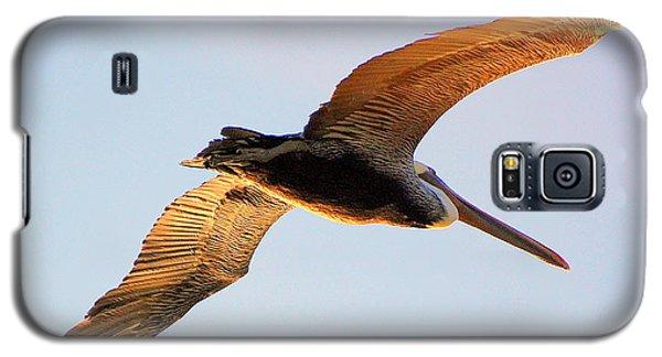 Golden Wings Galaxy S5 Case
