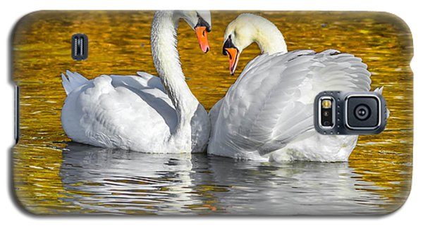 Galaxy S5 Case featuring the photograph Golden by Brian Stevens