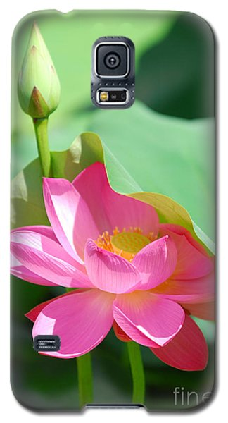 D48l-96 Water Lily At Goodale Park Photo Galaxy S5 Case