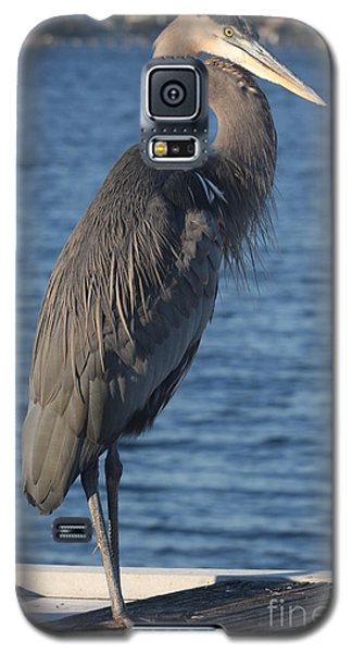 Galaxy S5 Case featuring the photograph Great Blue Heron  by Christiane Schulze Art And Photography