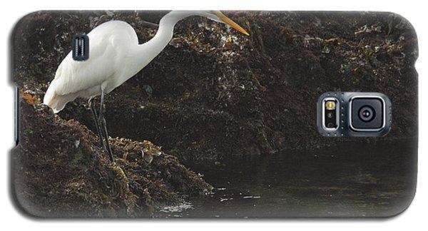 Great Egret Galaxy S5 Case