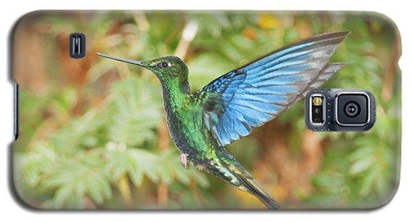 Great Sapphirewing Hummingbird Galaxy S5 Case