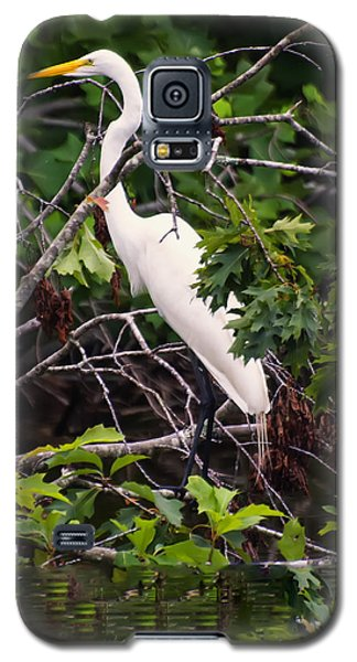 Great White Egret Galaxy S5 Case by Chris Flees