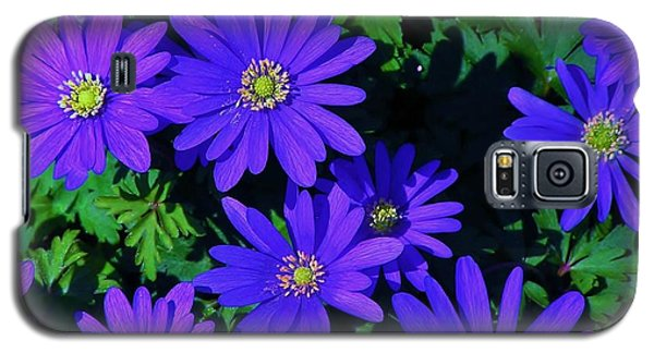 Grecian Wildflowers Galaxy S5 Case by John Wartman
