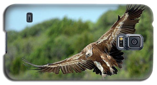 Griffon Vulture Galaxy S5 Case