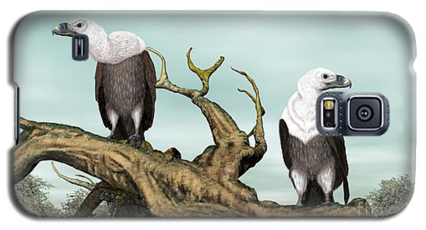 Griffon Vultures Galaxy S5 Case