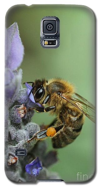 Galaxy S5 Case featuring the photograph Happy Bee by Joy Watson