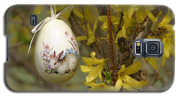 Happy Easter Galaxy S5 Case by Living Color Photography Lorraine Lynch