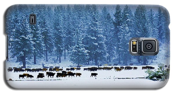 Hard Grazing Galaxy S5 Case