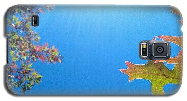 Orange Galaxy S5 Case - Hello Autumn by CML Brown