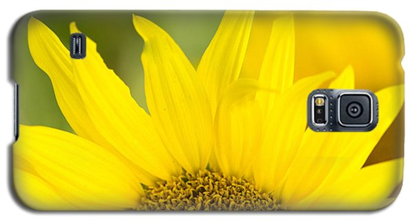 Galaxy S5 Case featuring the photograph Here Comes The Sun by Cathy Donohoue