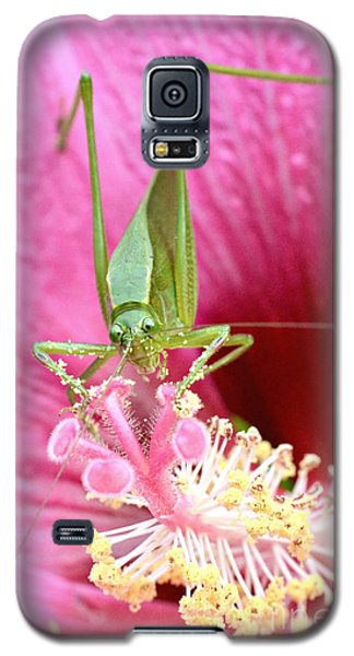 Hibiscus And Friend Galaxy S5 Case