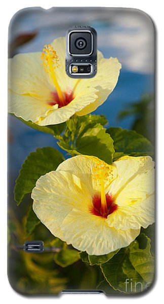 Galaxy S5 Case featuring the photograph Bright Yellow Hibiscus by Roselynne Broussard