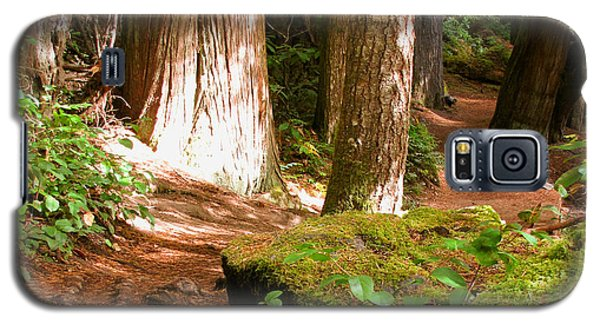 Hiking Trail Galaxy S5 Case by Katie Wing Vigil
