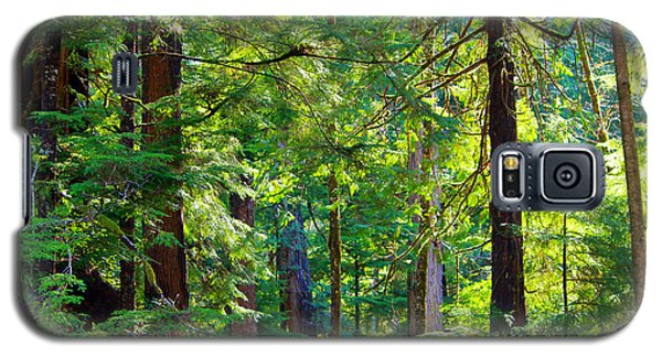 Hoh Rain Forest Galaxy S5 Case