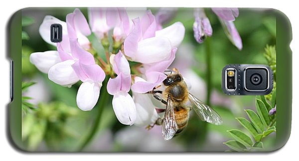 Honeybee On Crown Vetch Galaxy S5 Case by Lucinda VanVleck