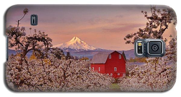 Hood River Sunrise Galaxy S5 Case
