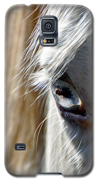 Horse Eye Galaxy S5 Case by Savannah Gibbs