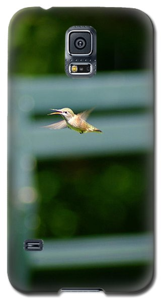 Hummer In Flight Galaxy S5 Case