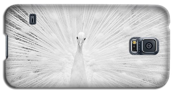 Galaxy S5 Case featuring the photograph Hypnotic Power by Simona Ghidini