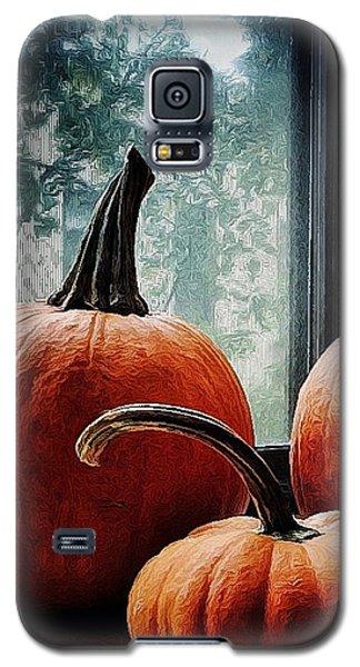I Love Pumpkins Galaxy S5 Case