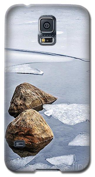 Ice Galaxy S5 Case - Icy Shore In Winter by Elena Elisseeva