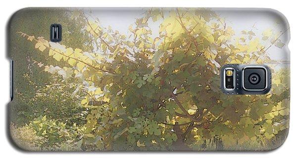 Indian Summer Garden Galaxy S5 Case by Margie Avellino