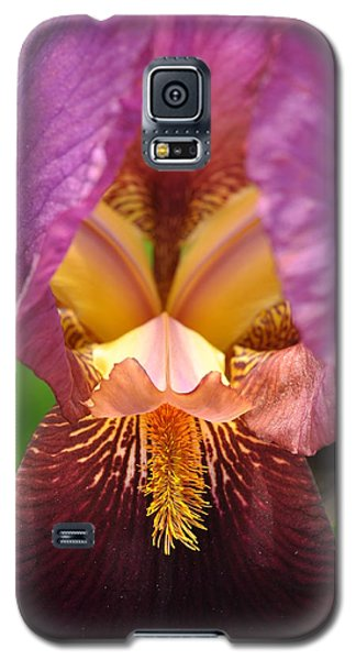 Galaxy S5 Case featuring the photograph Into The Center by Sabine Edrissi